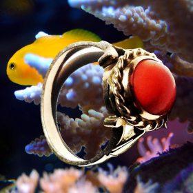 Gyűrűk borostyánból